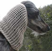 Dog Moda crochet dog snood